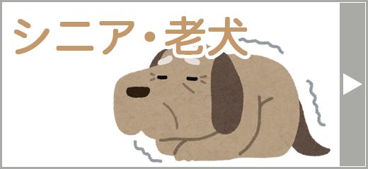 シニア・老犬