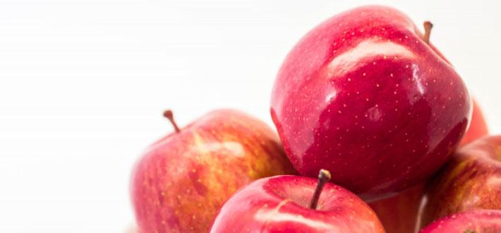 犬にりんごを食べさせても大丈夫?役立つ成分や与え方、注意点などをご紹介