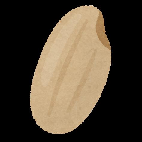 玄米・雑穀米